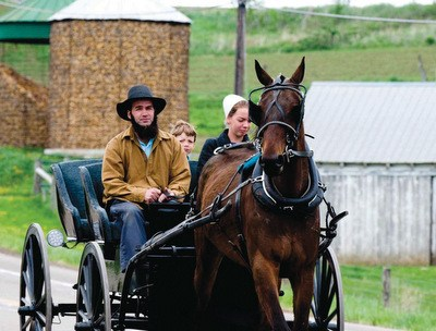 ohio-amish-stock-photo.jpg.5da574072efb6a90c6255f4cbff87758.jpg